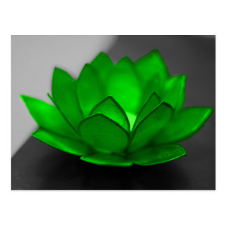 Green Lotus Postcard