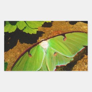 Green Luna moth Rectangular Sticker