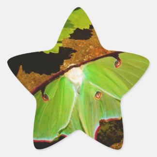 Green Luna moth Sticker