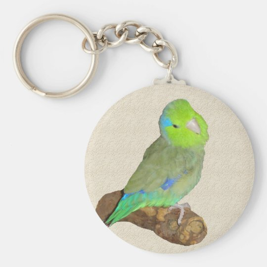 Green male parrotlet basic round button key ring