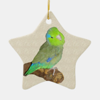 Green male parrotlet christmas ornament