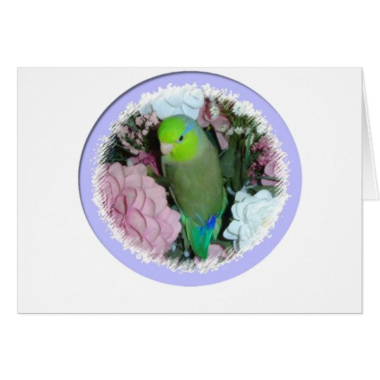 Green male parrotlet with flowers card