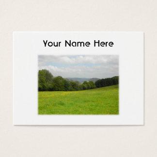 Green meadow. Countryside scenery. Custom