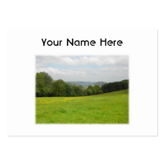 Green meadow. Countryside scenery. Custom Pack Of Chubby Business Cards