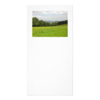 Green meadow. Countryside scenery. Custom Photo Greeting Card