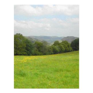 Green meadow. Countryside scenery. Flyer