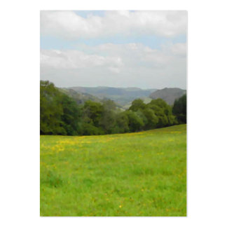 Green meadow. Countryside scenery. Pack Of Chubby Business Cards