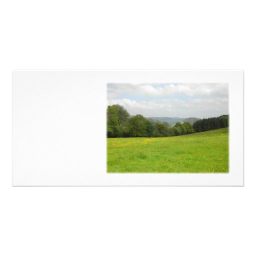 Green meadow. Countryside scenery. Picture Card