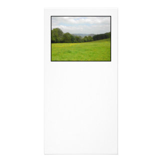 Green meadow. Countryside scenery. Photo Cards