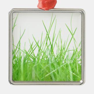 Green meadow Silver-Colored square decoration