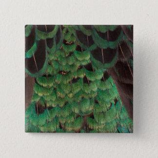 Green Melanistic Pheasant Feathers 15 Cm Square Badge