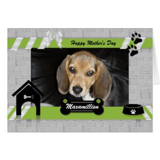 Green Mother's Day from the Dog Photo Greeting Card