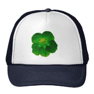 Green Nasturtium Hat