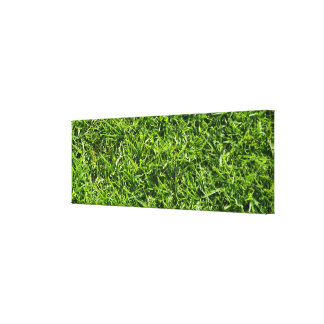 Green natural grass background wall art