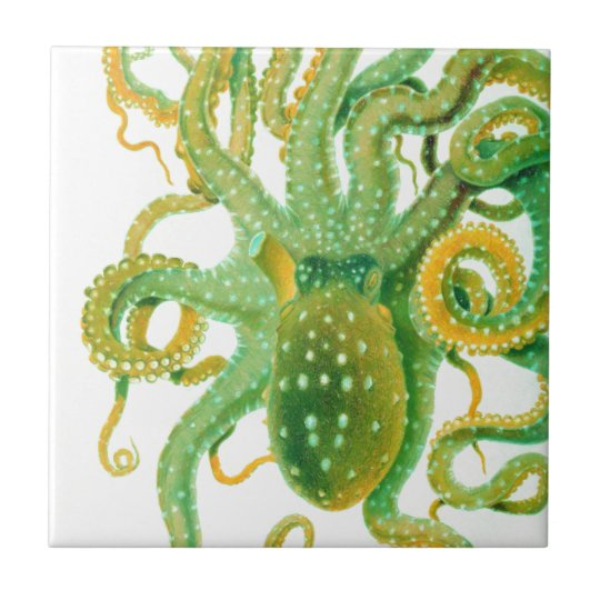 green octopus small square tile
