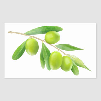 Green olives branch rectangular sticker