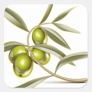 Green olives branch square sticker