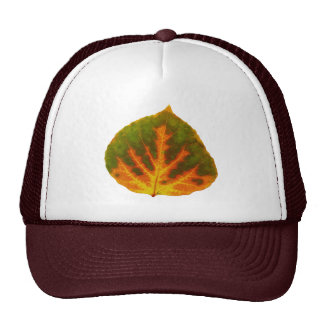 Green Orange & Yellow Aspen Leaf #1 Cap
