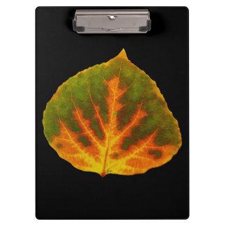 Green Orange & Yellow Aspen Leaf #1 Clipboard