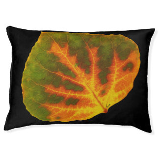 Green Orange & Yellow Aspen Leaf #1 Pet Bed