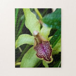Green Orchid Puzzle