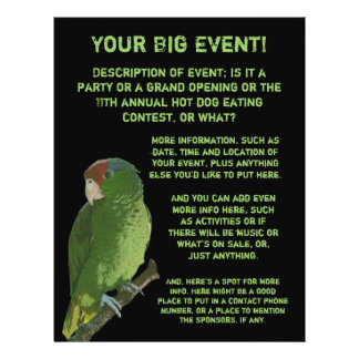 Green Parrot All Purpose 21.5 Cm X 28 Cm Flyer