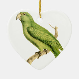 Green Parrot Bird Illustration by William Swainson Christmas Ornament