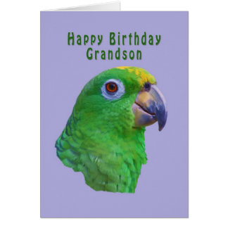 Green Parrot Birthday Greeting Card, Grandson Greeting Card