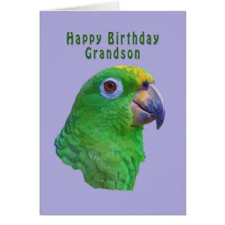 Green Parrot Birthday Greeting Card, Grandson Greeting Card