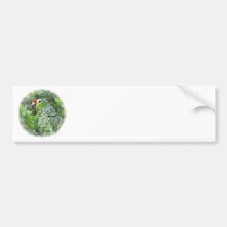 Green Parrot Bumper Sticker