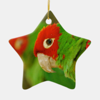 Green parrot christmas ornament