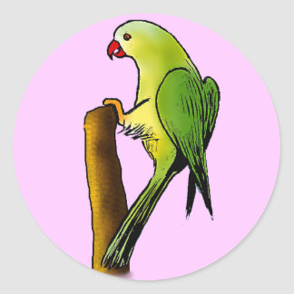 Green Parrot Classic Round Sticker