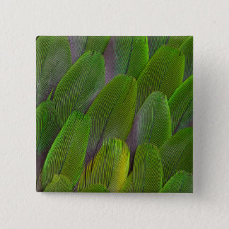 Green Parrot Feathers Close Up 15 Cm Square Badge