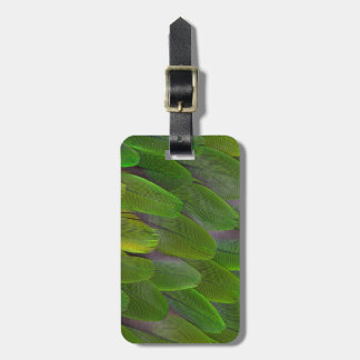 Green Parrot Feathers Close Up Luggage Tag