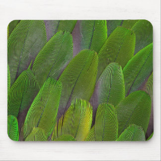 Green Parrot Feathers Close Up Mouse Mat