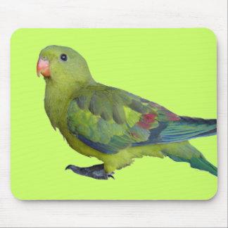 Green Parrot Mouse Mat
