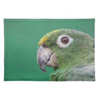 Green Parrot Placemat