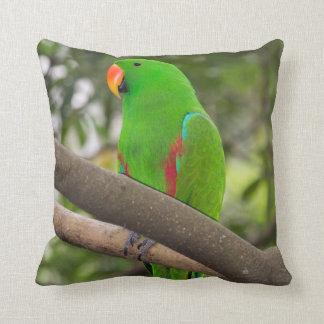 Green Parrot Portrait Cushion