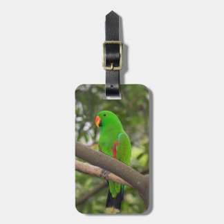 Green Parrot Portrait Luggage Tag