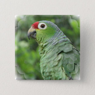 Green Parrot Square Pin