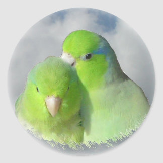 Green parrotlet pair classic round sticker