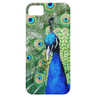 Green Peacock Case For The iPhone 5