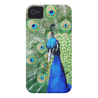 Green Peacock Case-Mate iPhone 4 Case