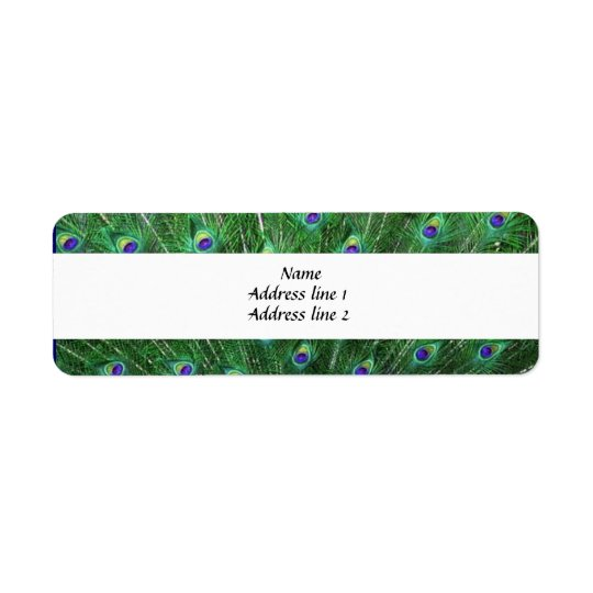 Green Peacock Feather Address Labels