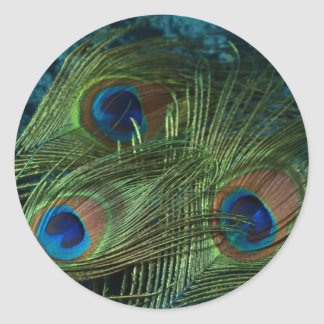 Green Peacock Feather Classic Round Sticker