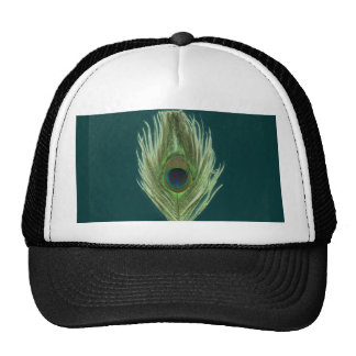 Green Peacock Feather D Hats