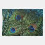 Green Peacock Feather Kitchen Towels