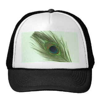 Green Peacock Feather on Green Trucker Hats