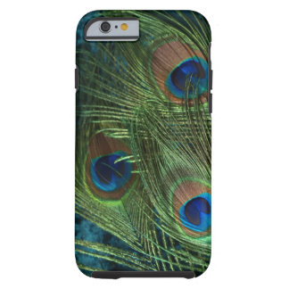 Green Peacock Feather Tough iPhone 6 Case