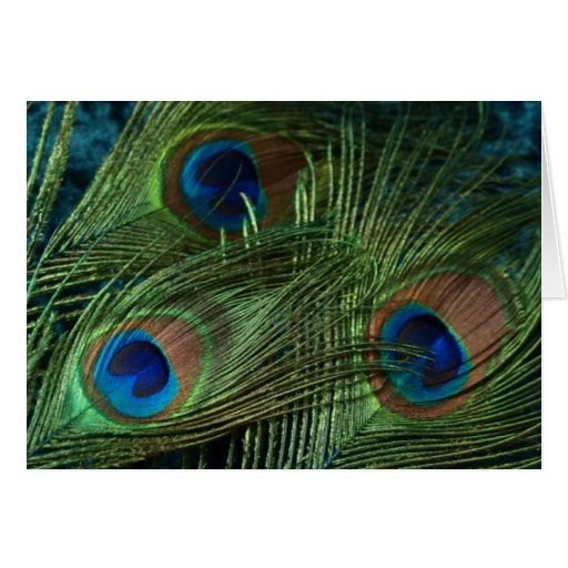 Green Peacock Feather Wedding Greeting Cards